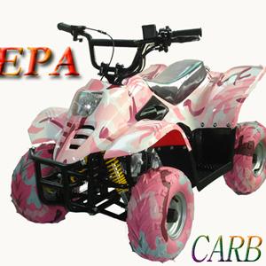WL-ATV110AA (pink      white) Quad