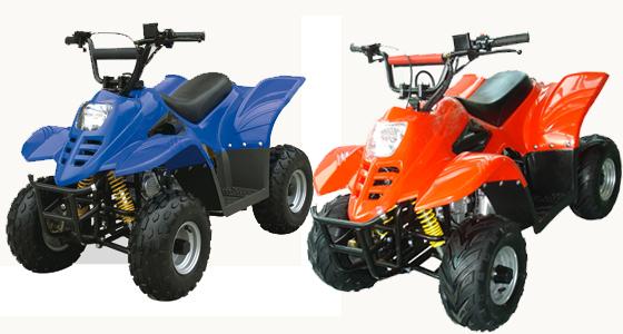 WL-ATV110AA SINGLe      CoLoR Quad