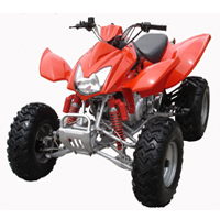WL-ATV09-300CC Quad