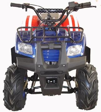 WL-ATV110AB-7 Quad