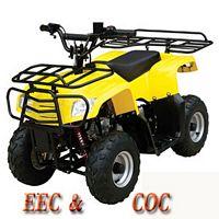 WL-ATV090AB YeLLoW      Quad