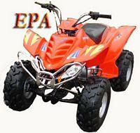 ATV110A RAPtoR MoDeL      Quad