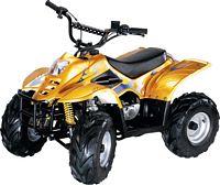 WL-ATV110AA GoLDeN      Quad