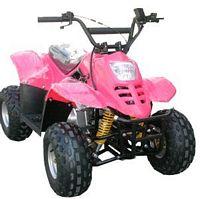 WL-ATV110AA-6 Quad
