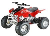WL-ATV110Ae-8 Quad