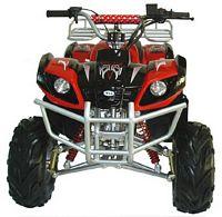 WL-ATV110AB-HW Quad
