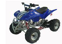 WL-ATV110Ae-7 Quad